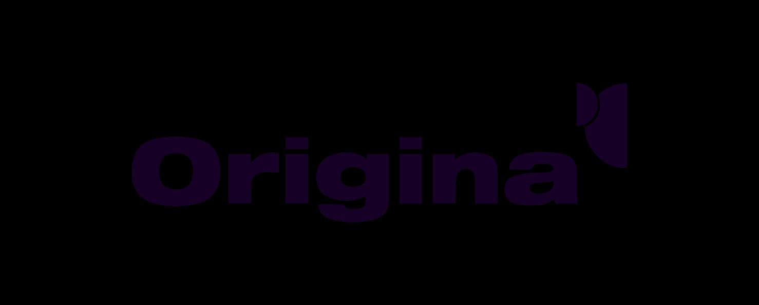 Origina - Client - Diarmuid Sexton Web Design - Dublin, Ireland