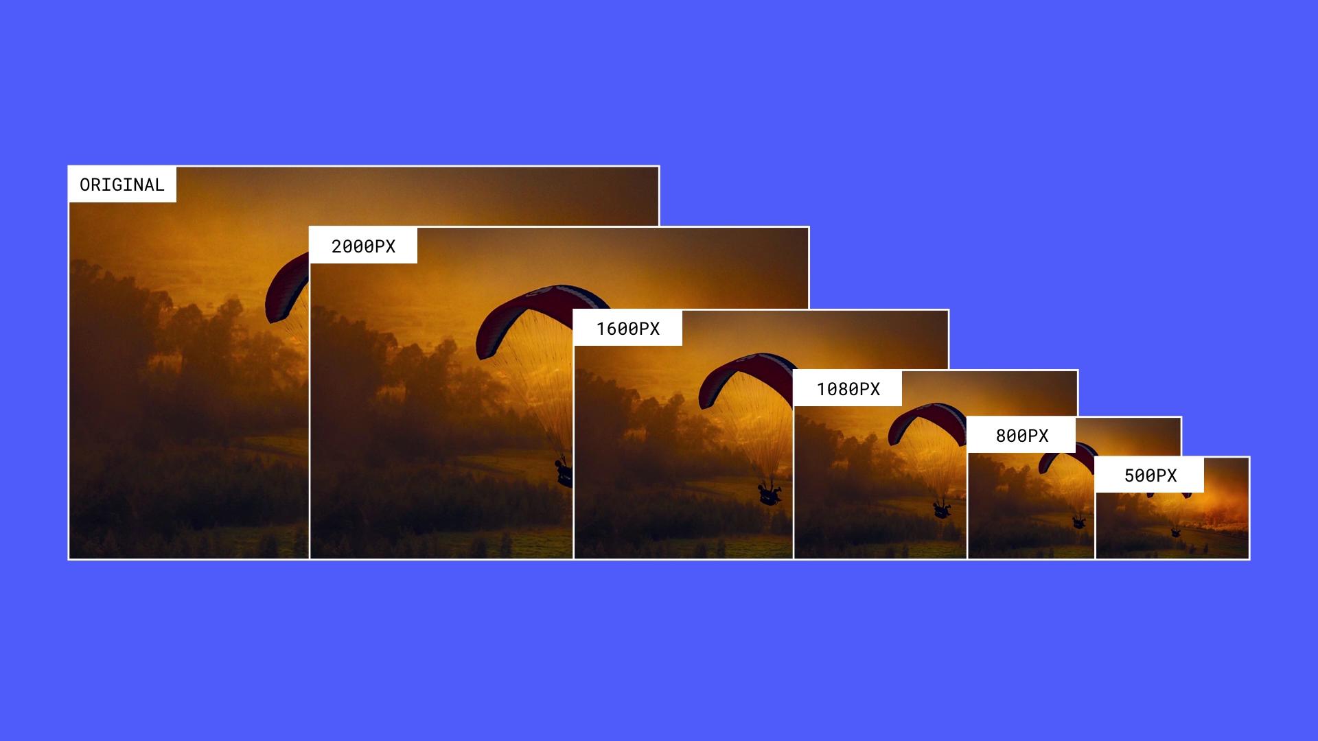 Webflow Responsive image variants