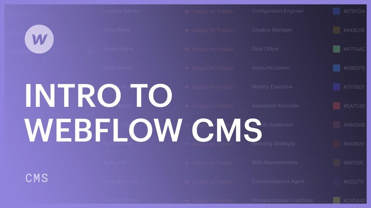 Intro to Webflow CMS