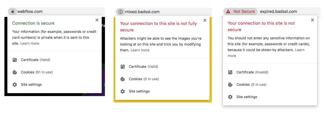 Troubleshoot website security issues | Webflow University