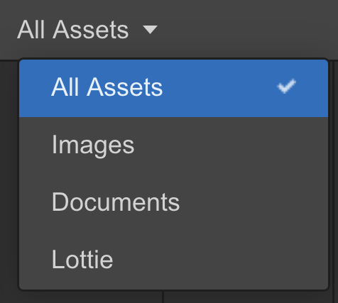 Webflow Asset Manager Filter