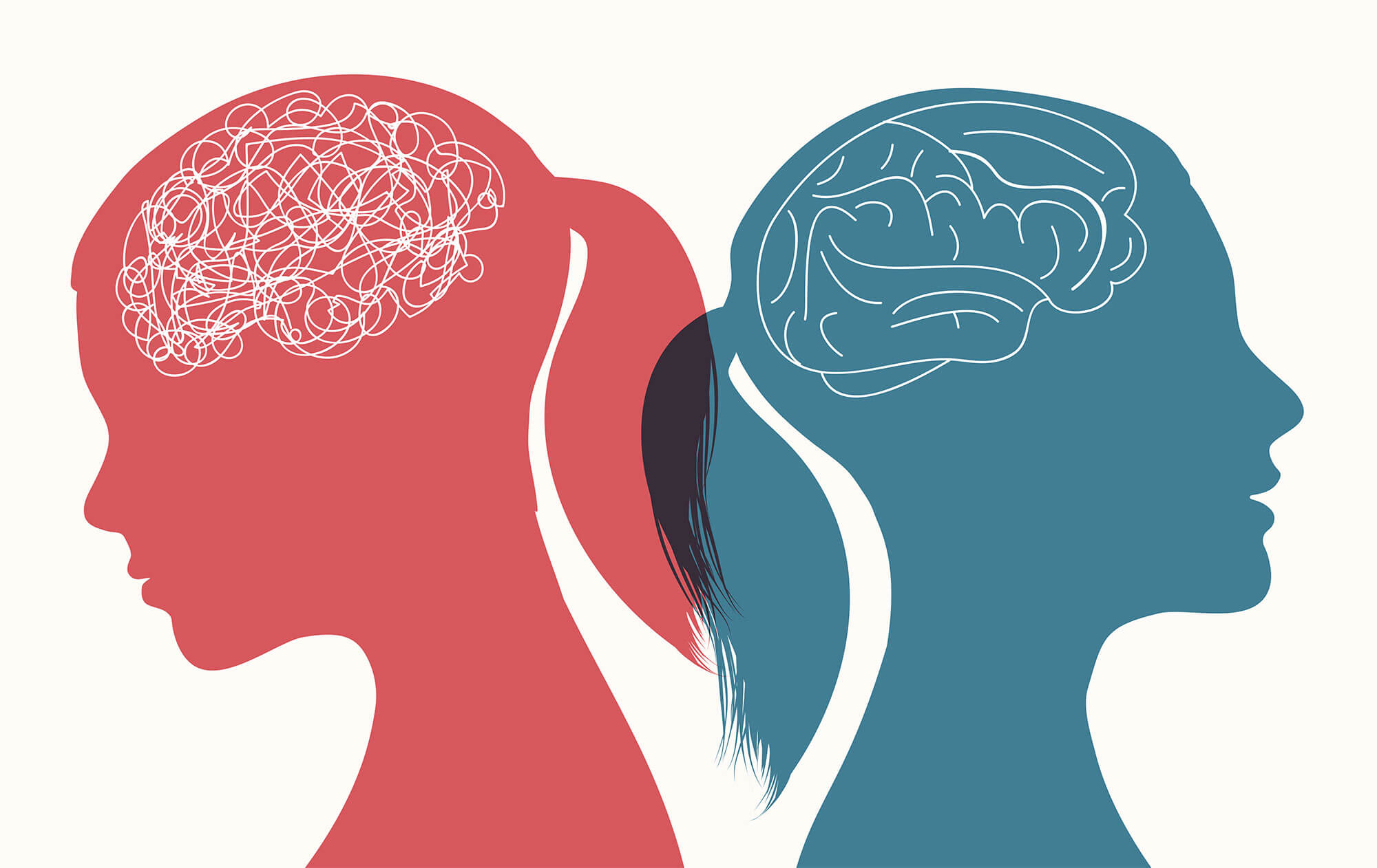 An illustration featuring silhouettes of two women and their brains; one women's brain is drawn more haphazardly than the other's