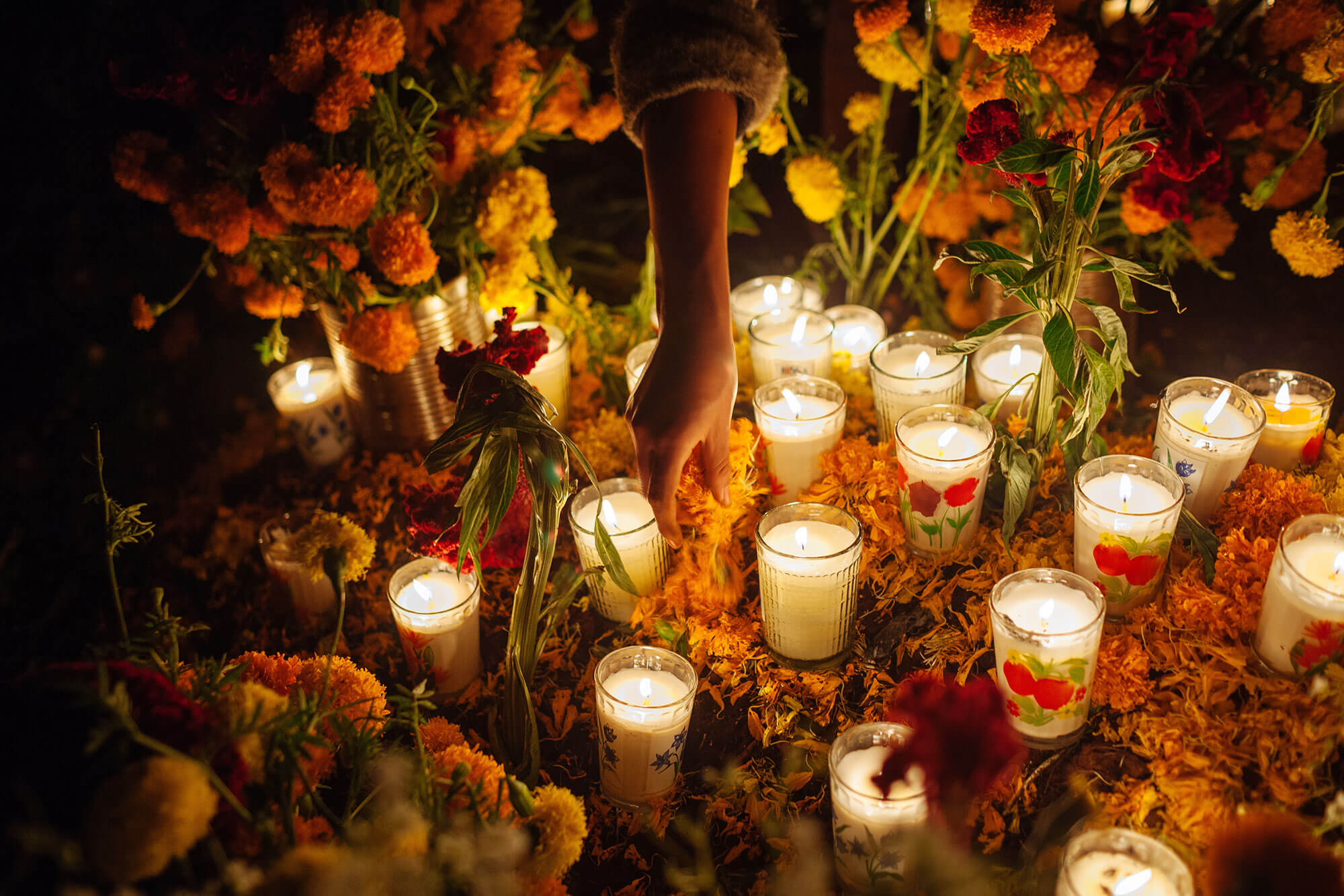 A woman places marigold flower petals in an offering during the Day of the Dead in Tzintzuntzan, Mexico A woman places flower petals in an offering during the Day of the Dead in Mexico.