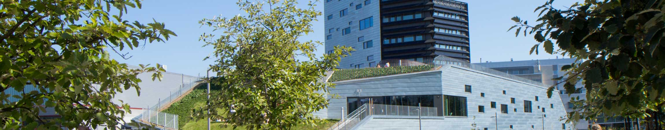 New multidisciplinary Tampere University created from university merger in Finland