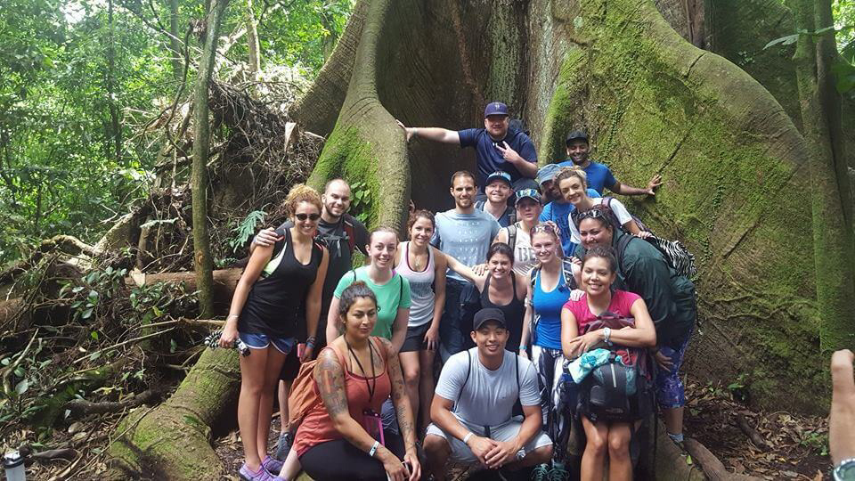 blog-explore-central-america-tree-of-life-arenal-volcano