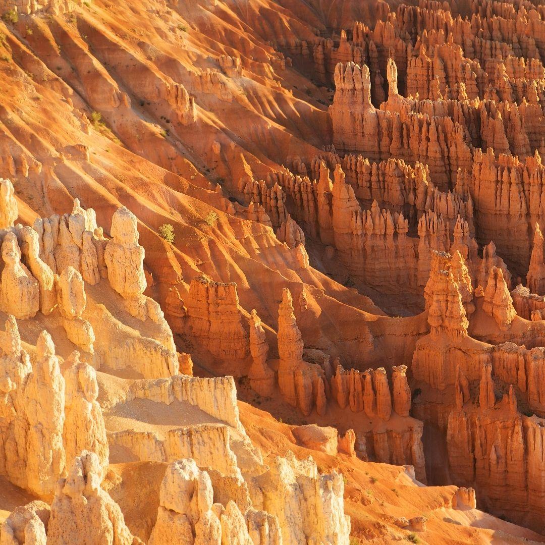 zion-bryce-canyon