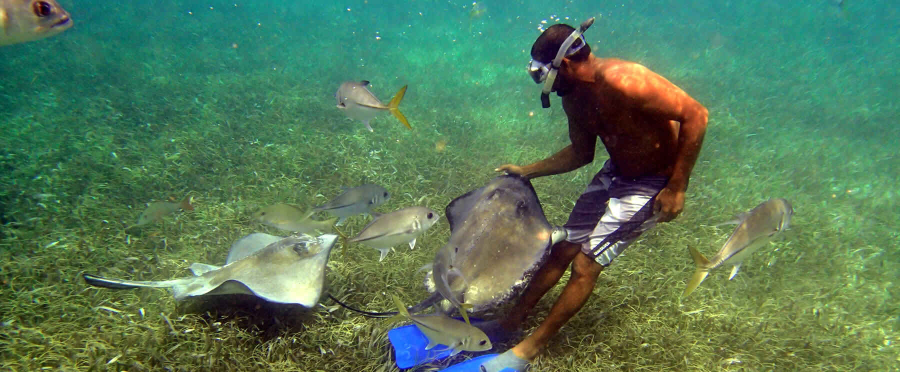 snorkeling-diving-swimming-belize
