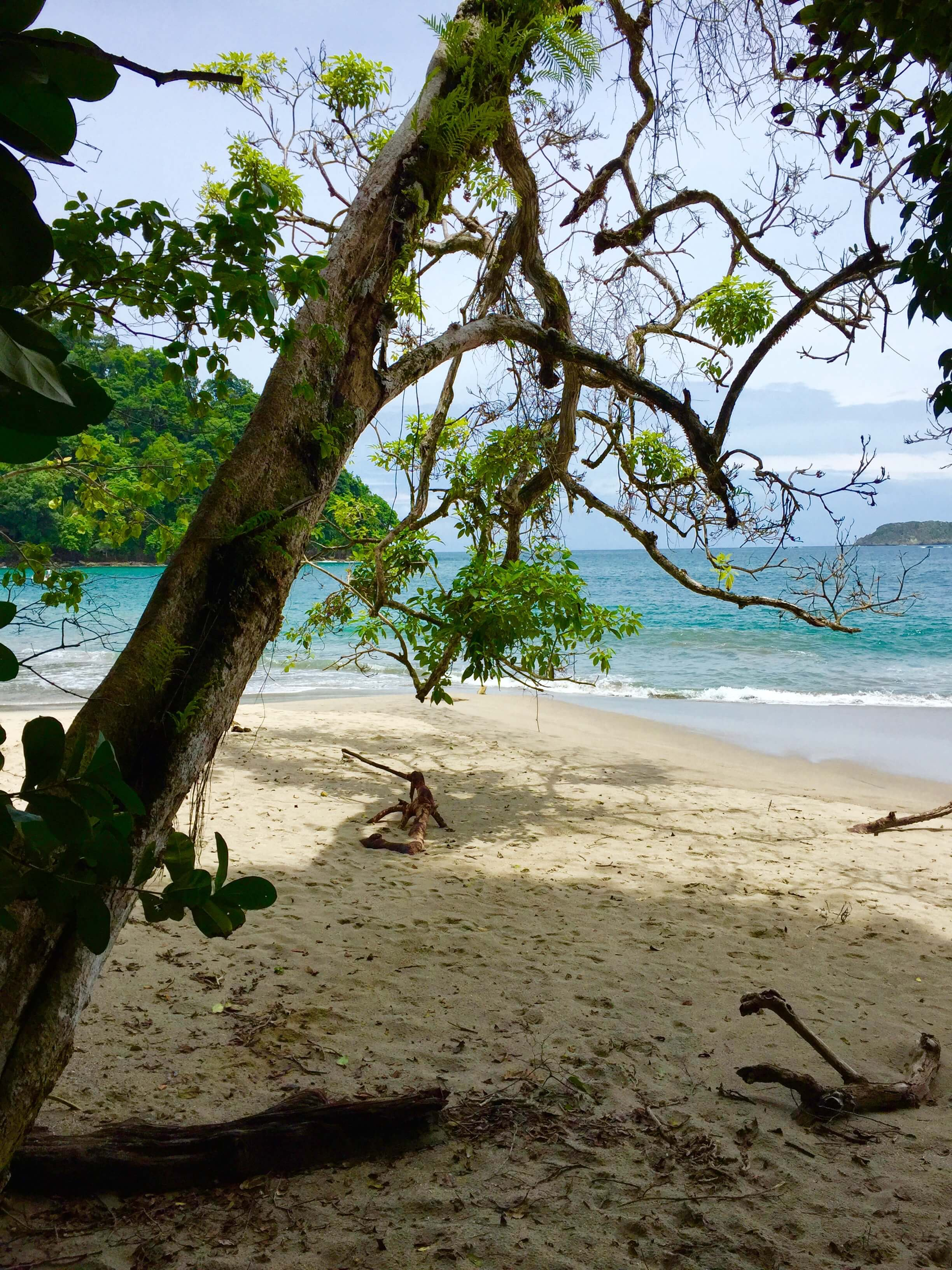 blog-costa-rica-9-days-manuel-antonio-national-park-beach