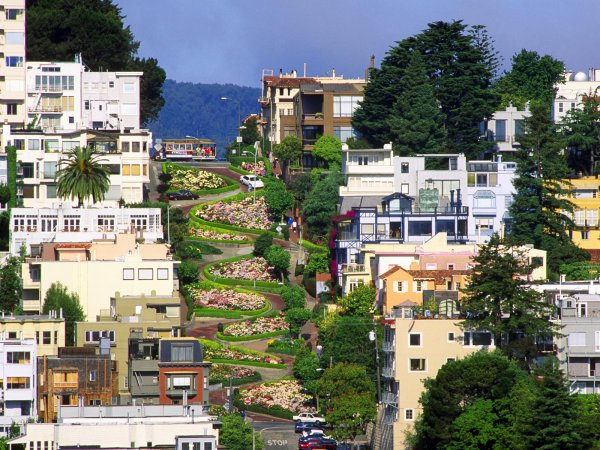 blog-Your-Guide-to-Exploring-San-Francisco-Without-Spending-a-Dime-lombard-street .jpg