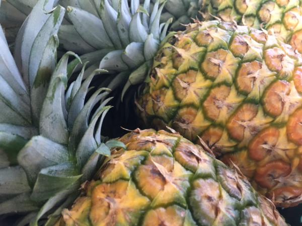 blog-The-Easiest-Wellness-Hacks-for-Traveling-pineapples