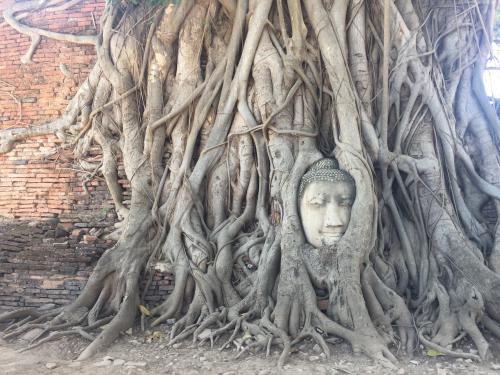 blog-The-City-of-Angels-Your-Bangkok-City-Guide-ancient-ruins.jpg