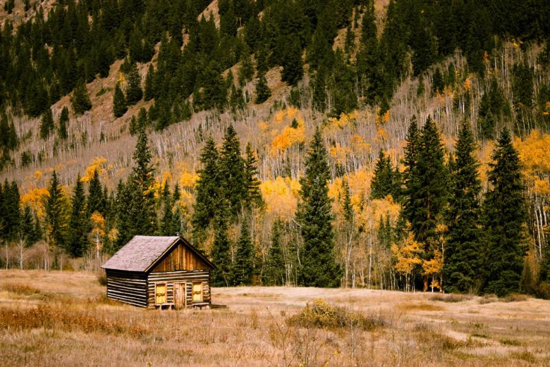 Living in a Cabin: What you Need to Know