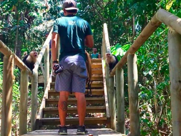 under30experiences-group-travel-blog-for-millennials-why-we-stopped-going-to-manuel-antonio-national-park-aggressive-monkeys