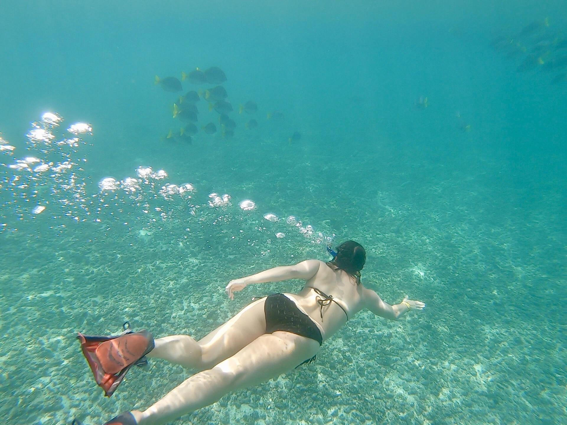 snorkeling-under30experiences-galapagos-trip