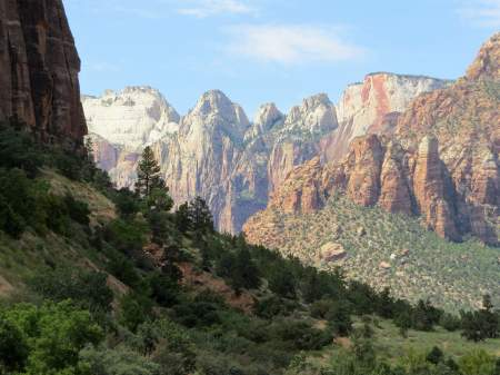 Forests and mountain views at Zion National Park