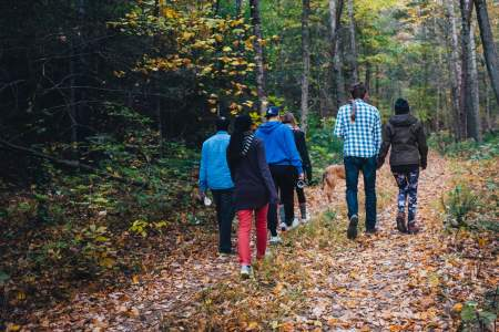 Group hiking, fall season trips