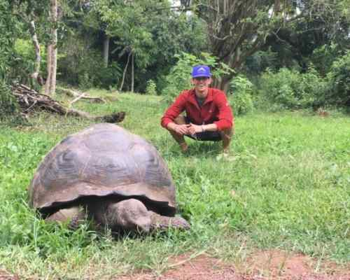 Galapagos tortoise ecuador south america solo travel destinations under30experiences