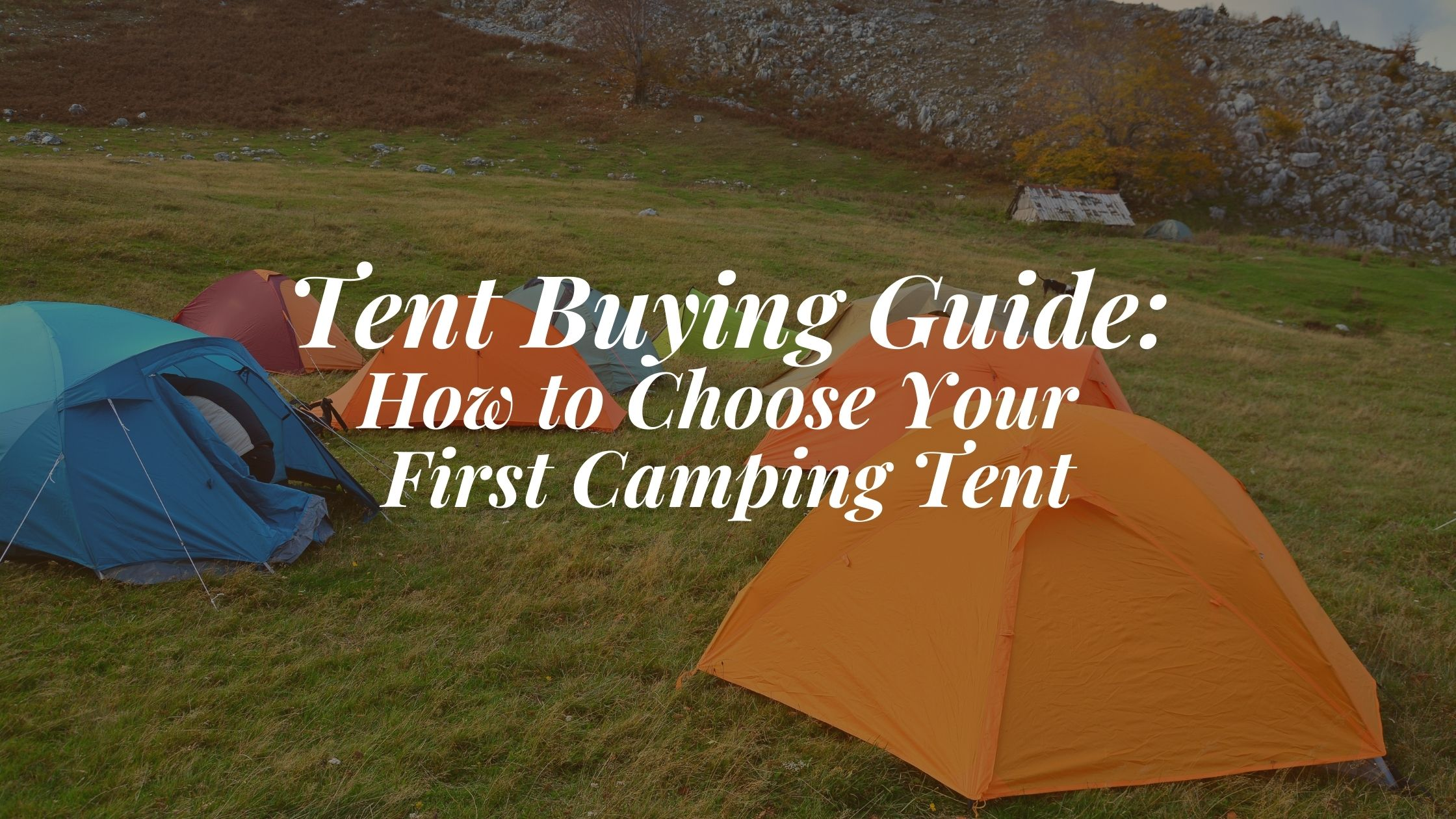 Tent Buying Guide: How to Choose Your First Camping Tent