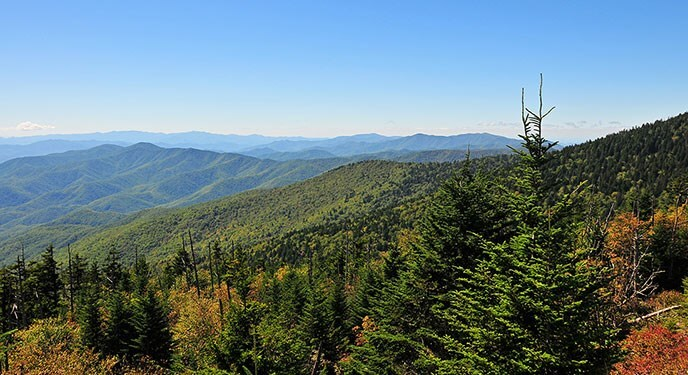 Visitor Guide to Great Smoky Mountains National Park