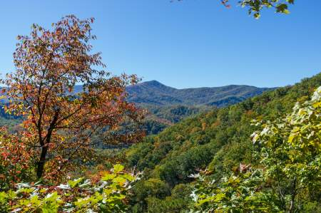 Hiking in Great Smoky Mountain National Park