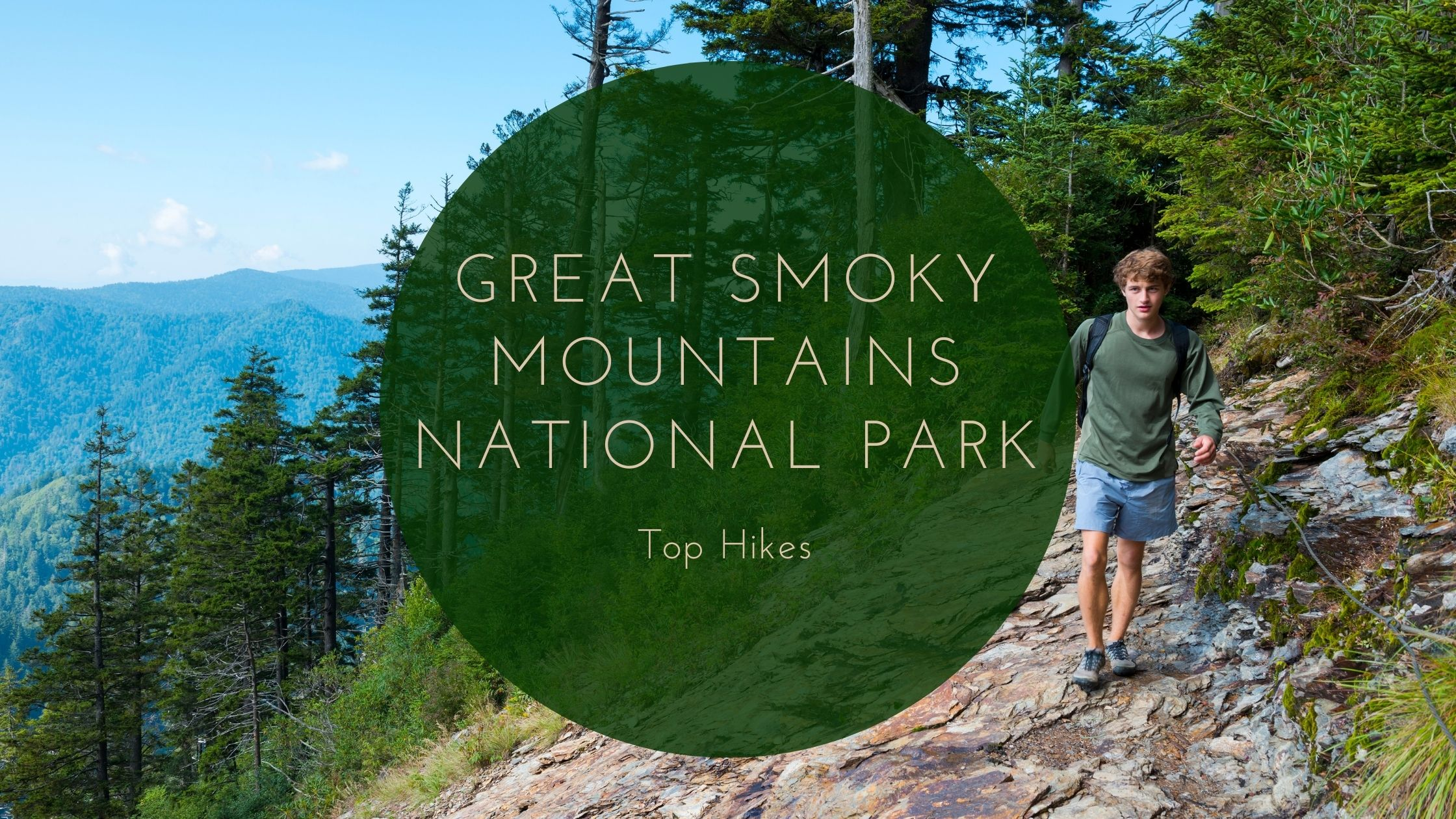 Top Hikes in Great Smoky Mountains National Park
