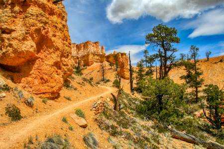 Top Hikes in Bryce Canyon National Park