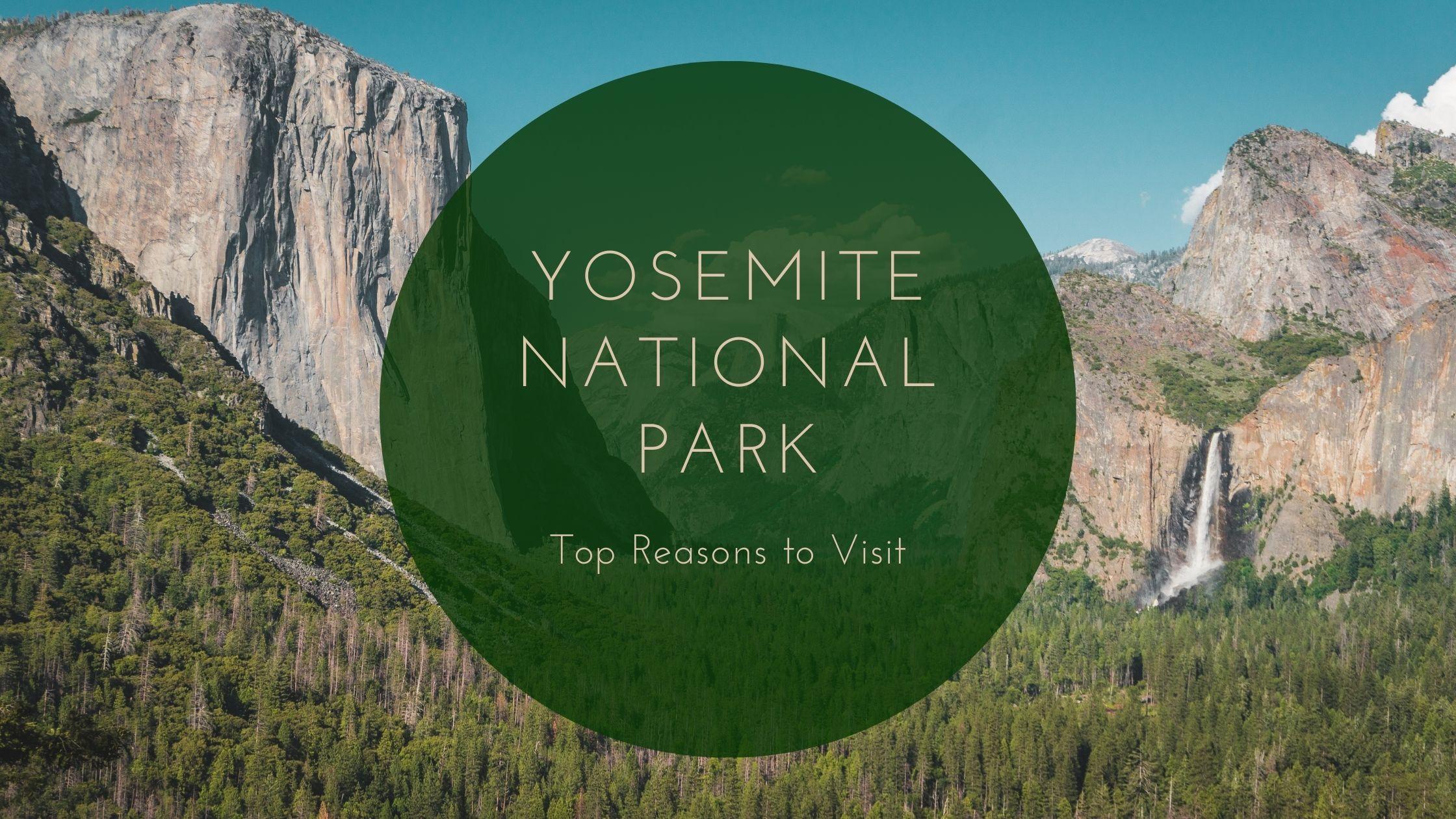 Top Reasons to Visit Yosemite National Park