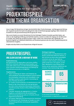 Projektbeispiele Organisation