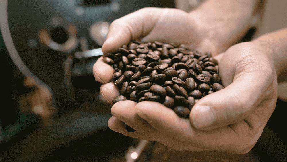 Обжарка кофе от экспертов отрасли