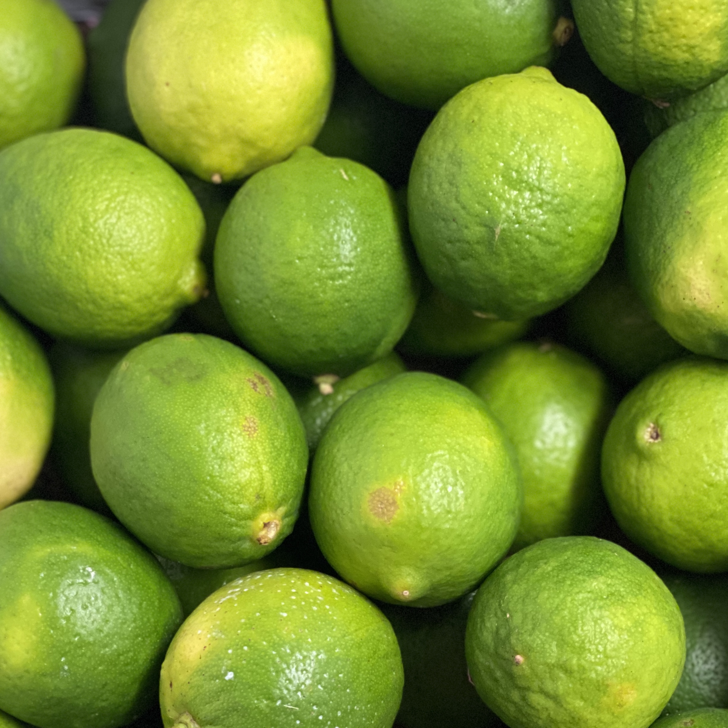Limes (2 Pack)