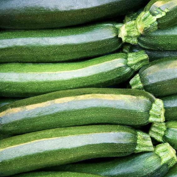 Green Zucchini (2 Pack)