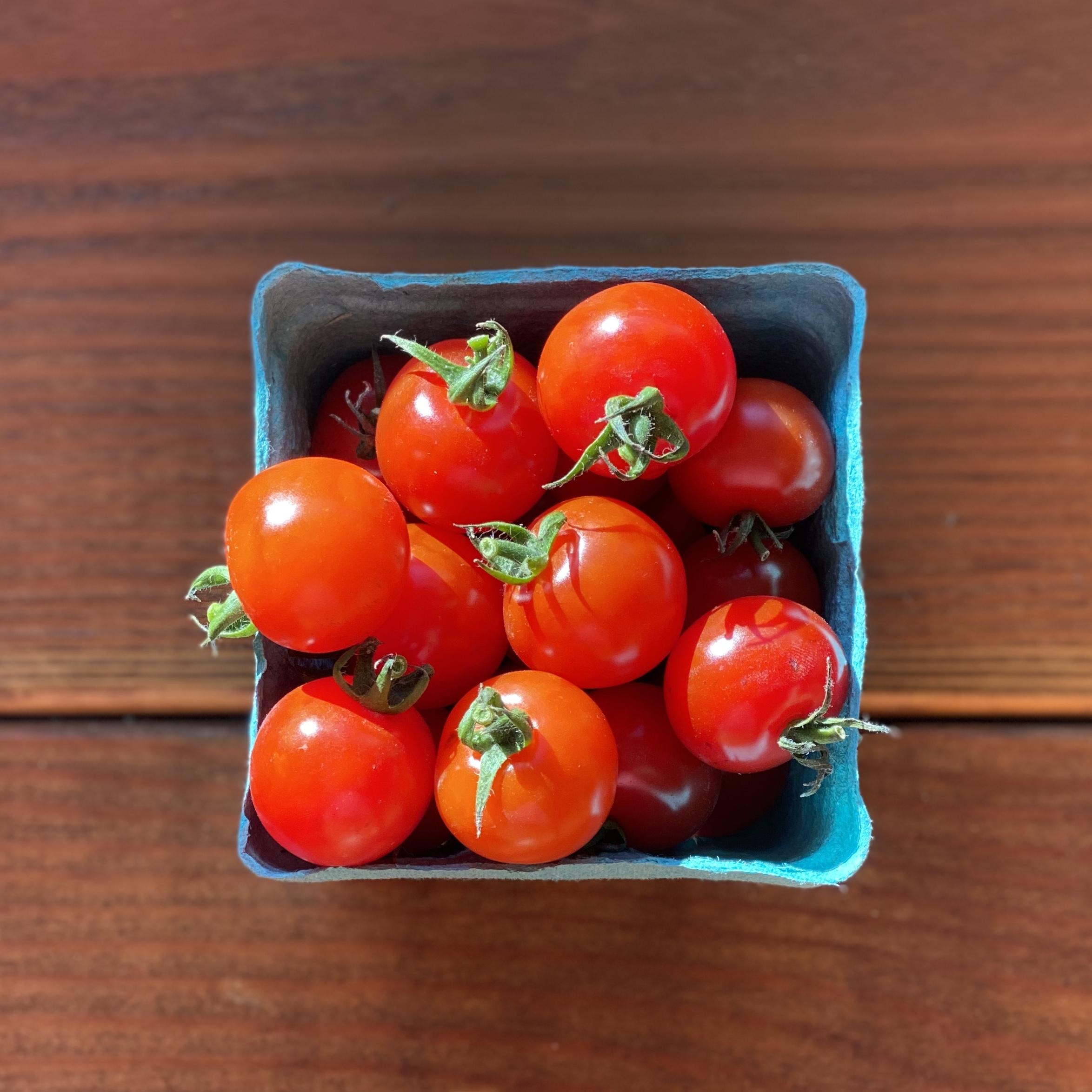 Jersey Cherry Tomatoes