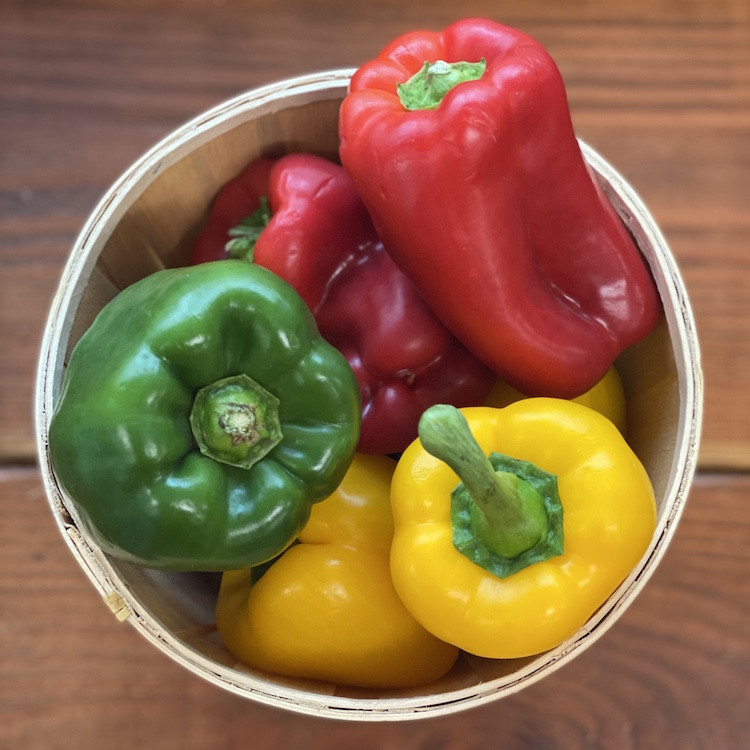 Green Peppers (Pack of 3)