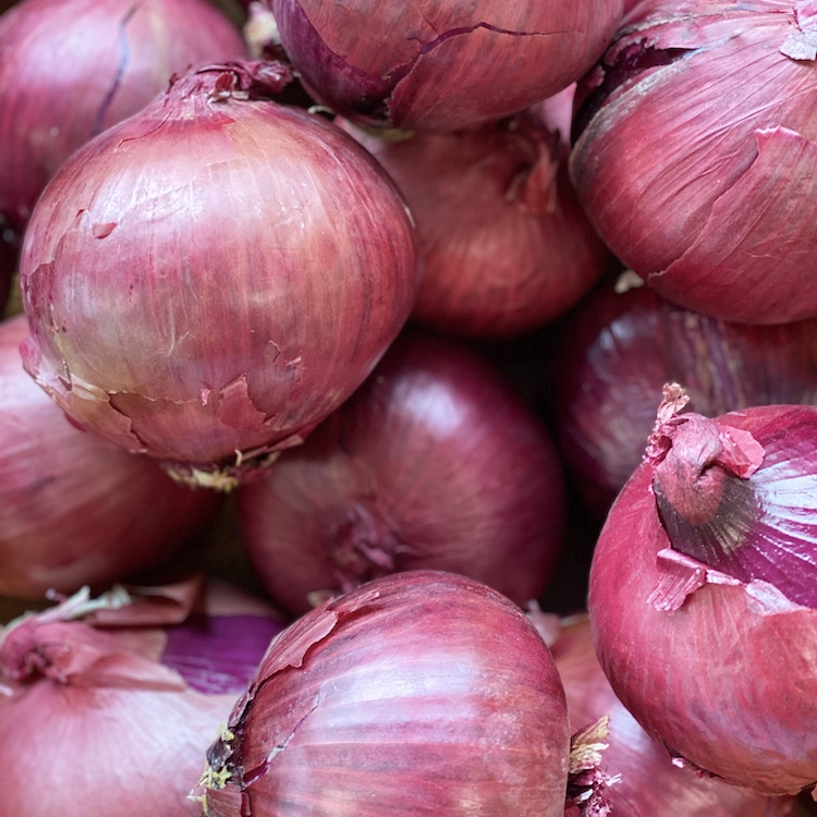 Red Onion (2 Pack)