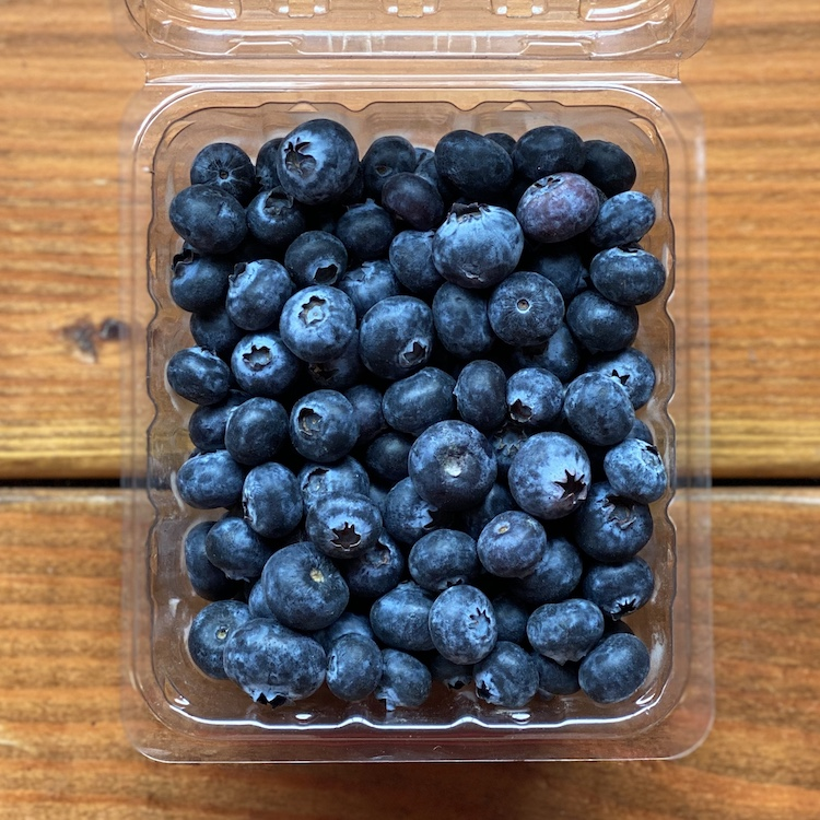 Jersey Blueberries