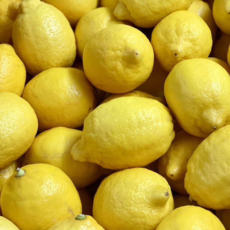 Lemons (2 Pack)