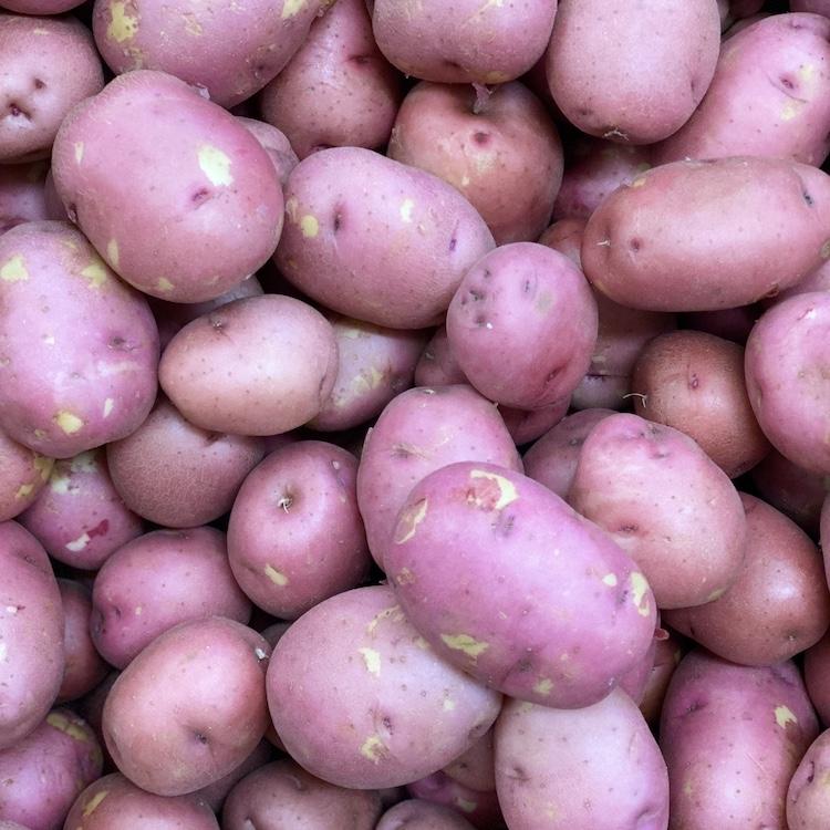 Red Potato (2 lb bag)