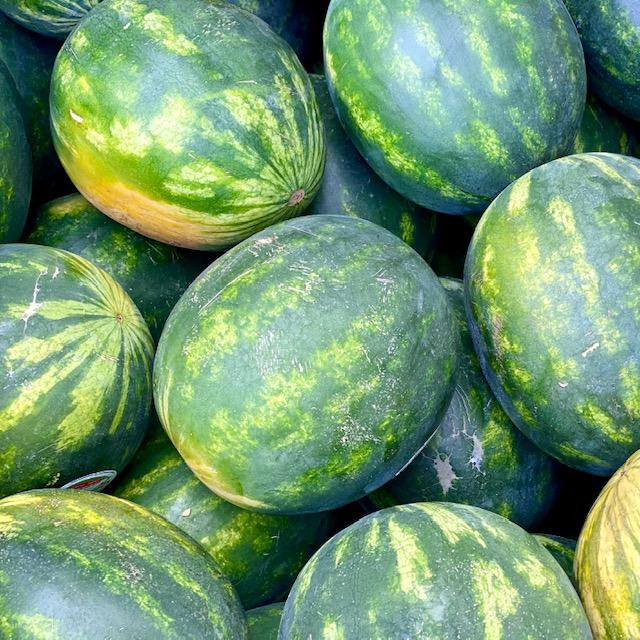 Large Seedless Watermelon