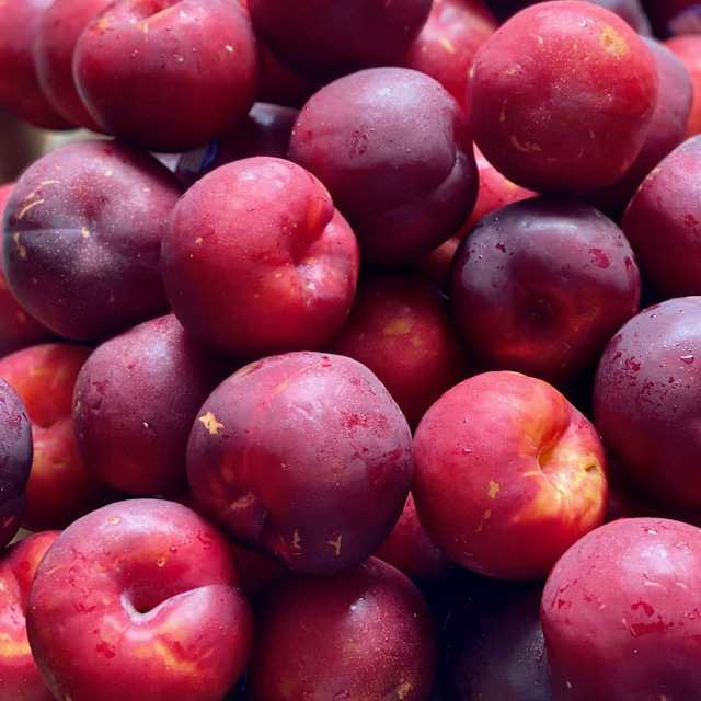 Plums (4 Pack)