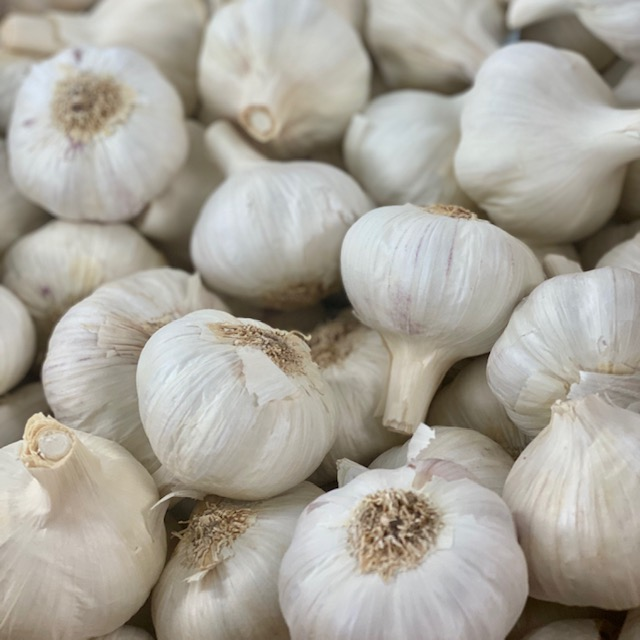 Large Garlic (Per Piece)