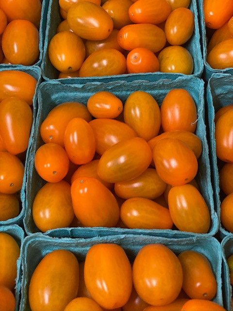 Jersey Grape Tomatoes