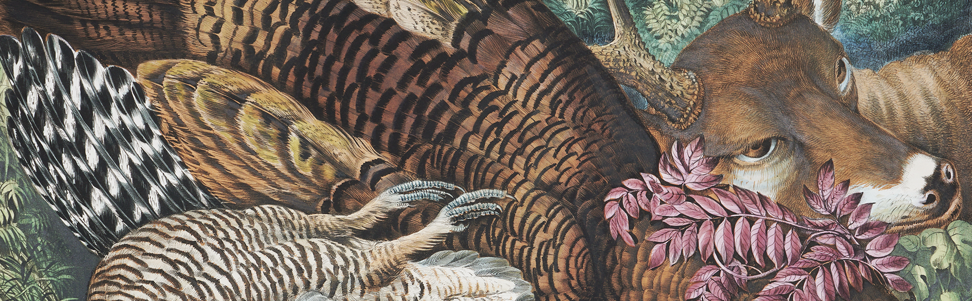 America On Stone: the Rise of Commercial Lithography in the 19th Century