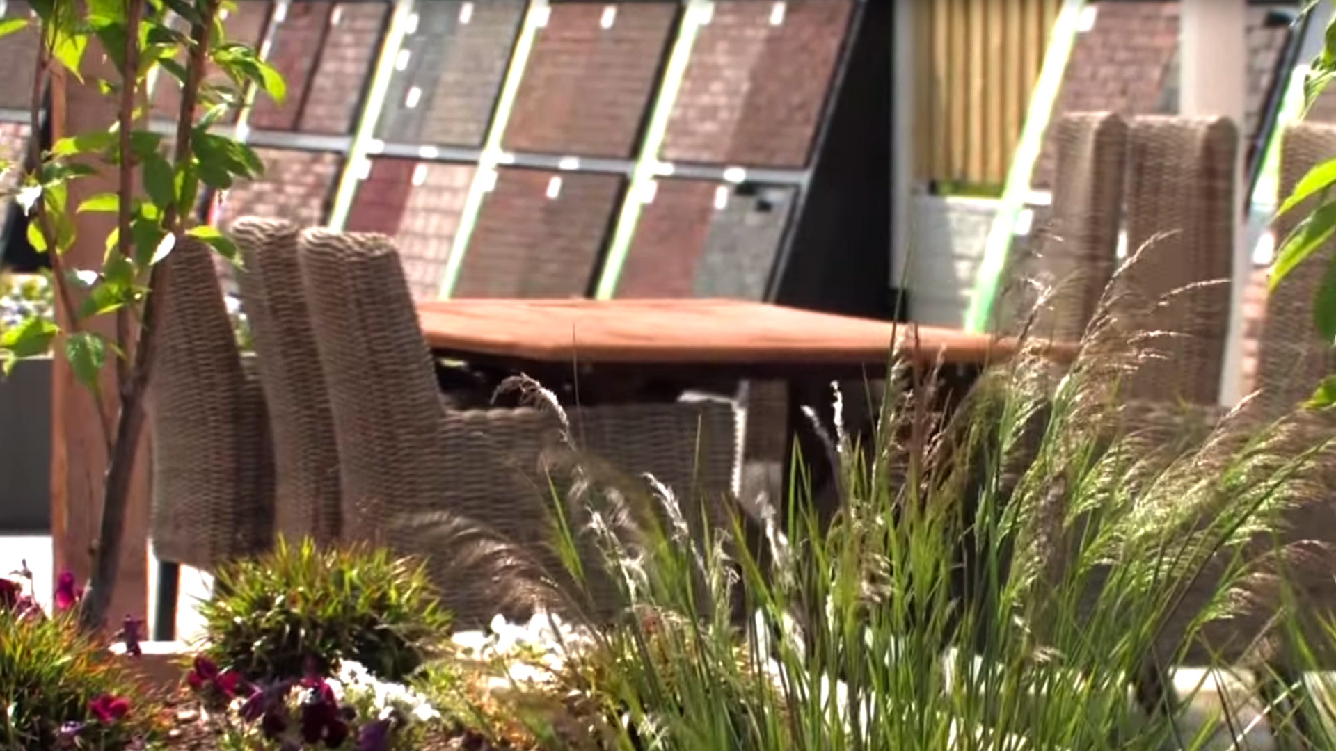 Spaansen Tuin en Bestrating in Winkel