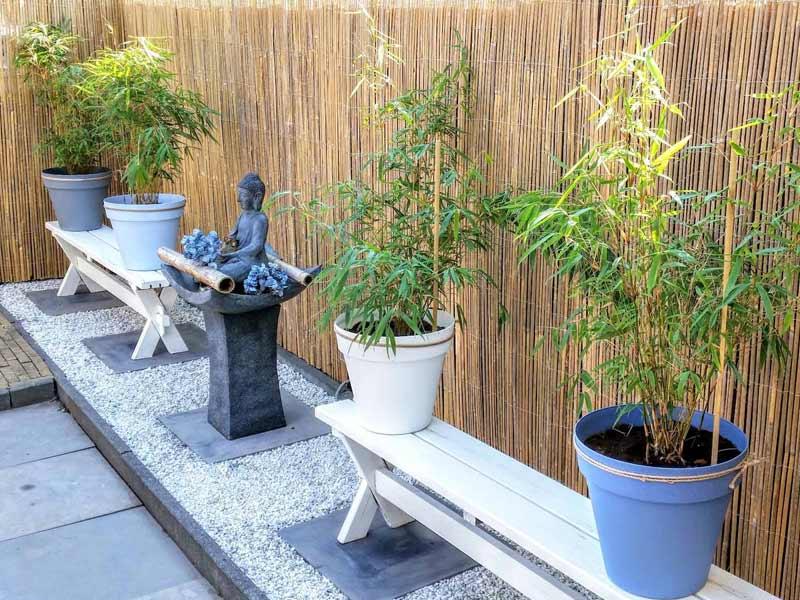 Bamboematten als schutting