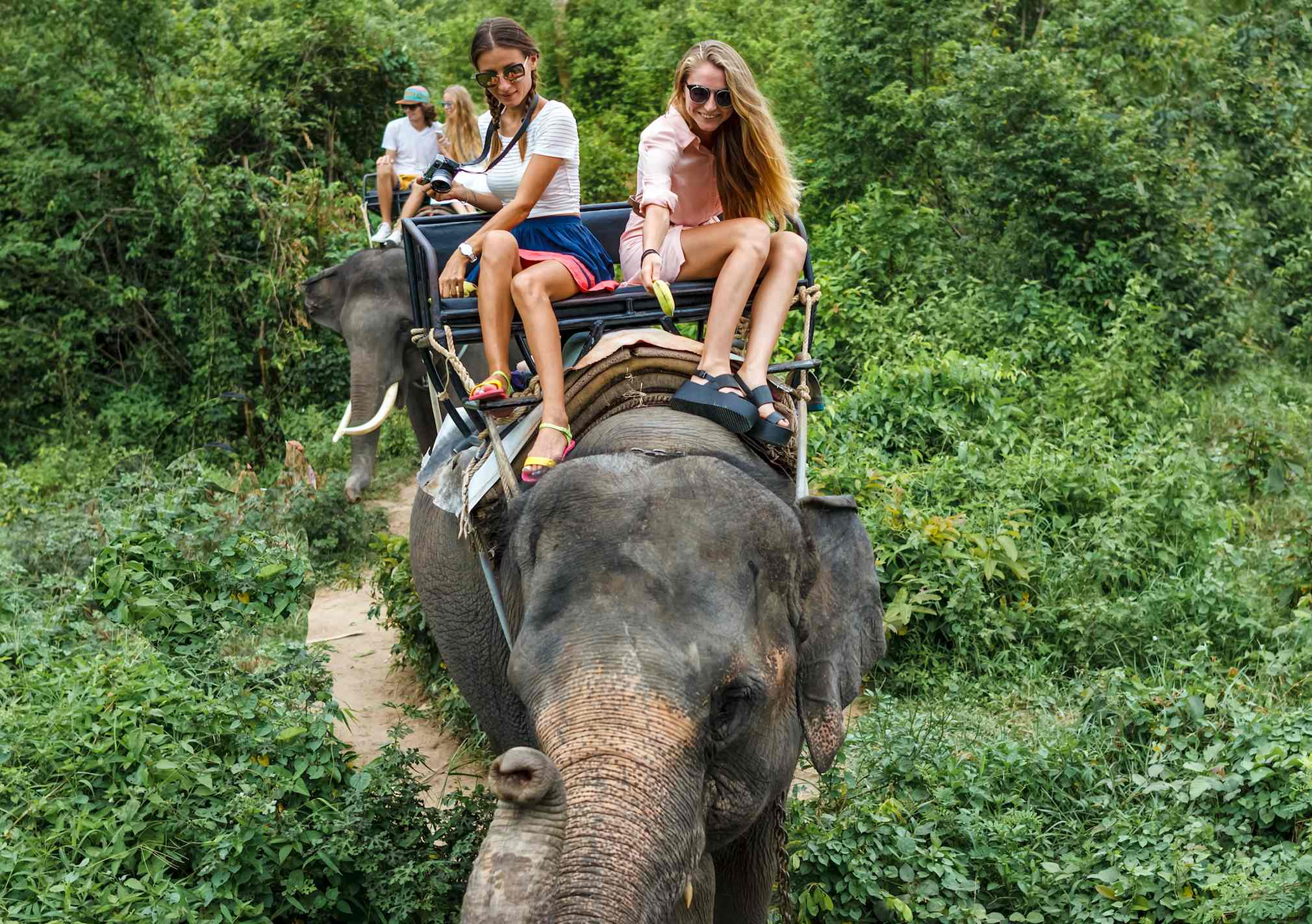 Two women ride on an elephant