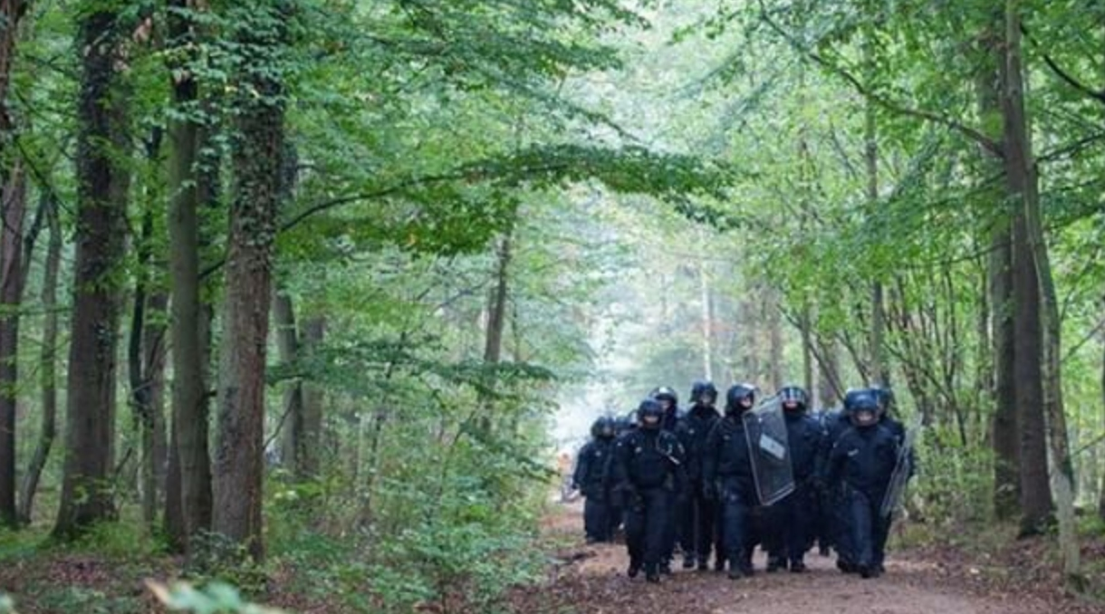 German police in the Hambach forest