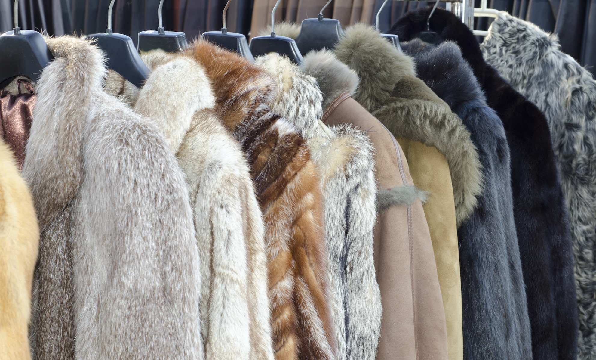 Fur Clothing