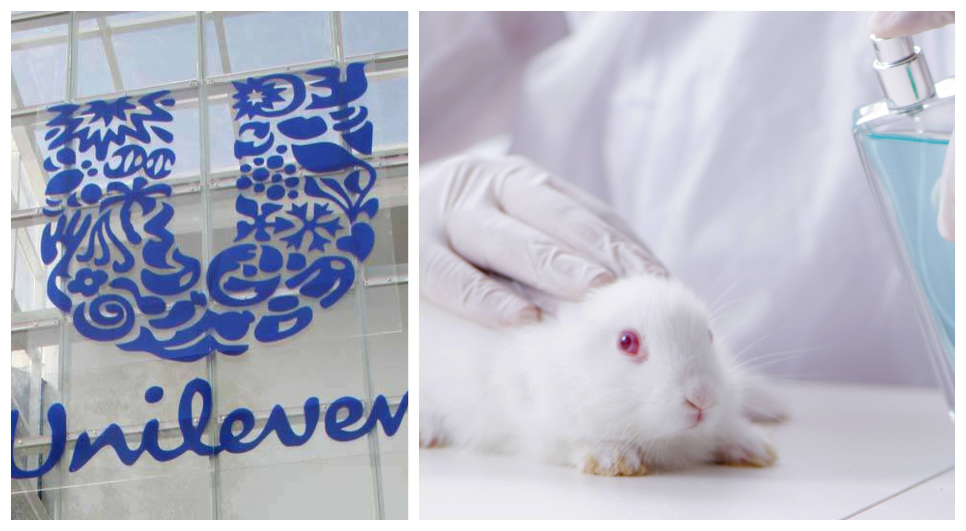 Unilever logo and a lab rabbit
