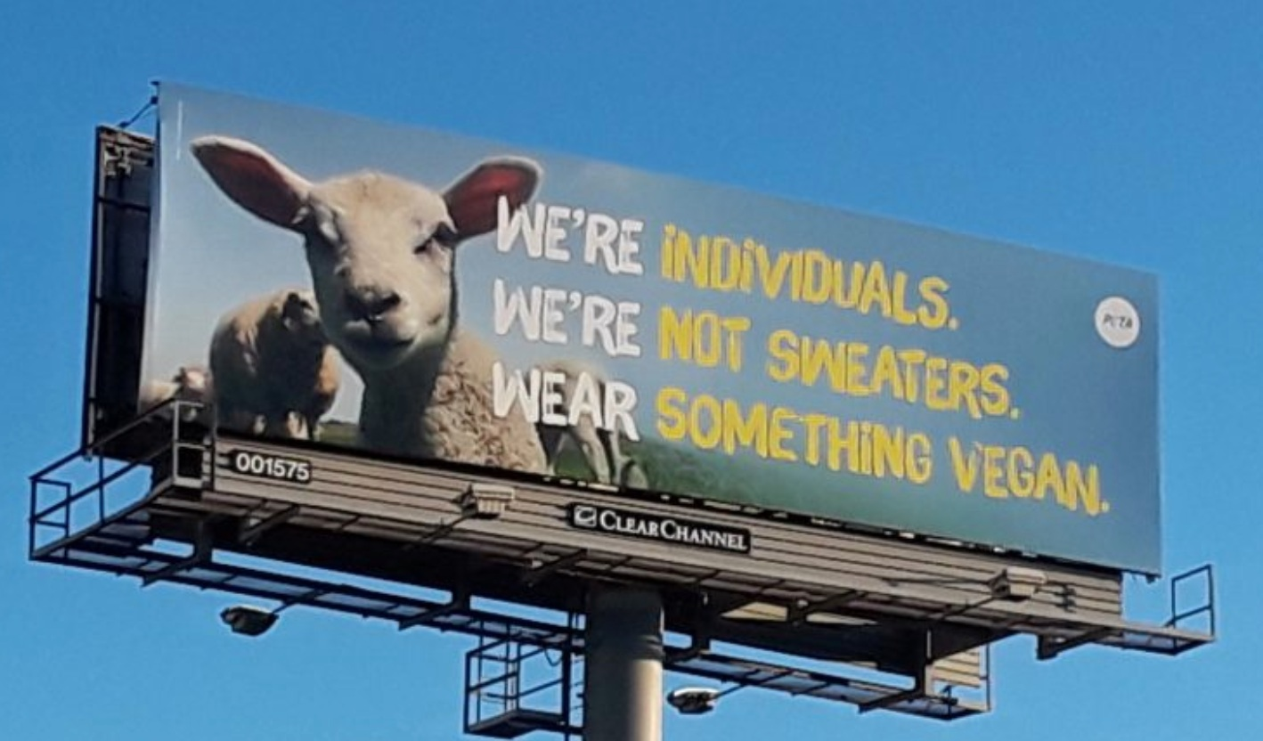 PETA vegan anti-wool poster