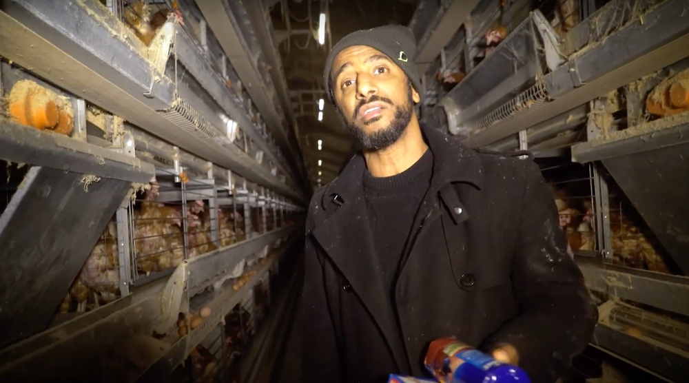 French vegan rapper Stomy Bugsy in a battery farm